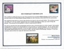 pet-portrait-gift-certificate